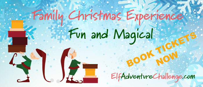 elf_banner_advert-01.jpg